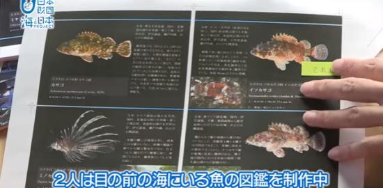 #19 磯へGO!目の前の海の魚まるごと図鑑|海と日本PROJECT in 鹿児島