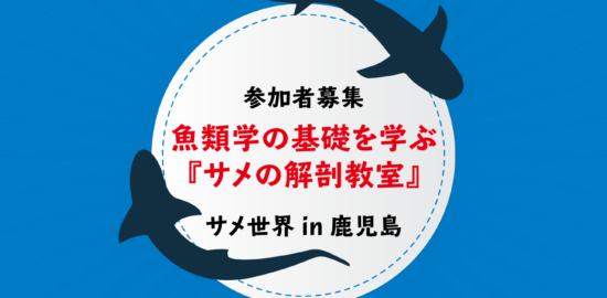 魚類学の基礎を学ぶ『サメの解剖教室』を開催します!いおワールドの『サメ世界 in 鹿児島』