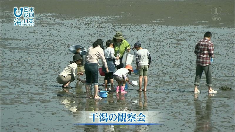 海と人と人をつなぐ「干潟の観察会」で伝えたい思い