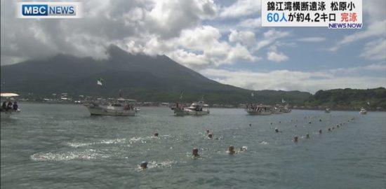 錦江湾横断遠泳、松原小の子どもたちが挑戦!
