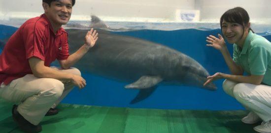 かごしま水族館の夏休みイベント!