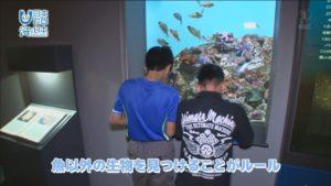 我は海の子2日目「生物の多様性を学ぶ」いおワールドかごしま水族館