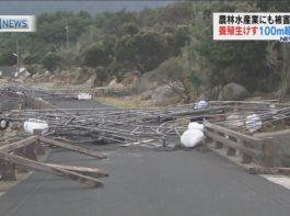 「台風」から身を守るために注意が必要なポイントとは?