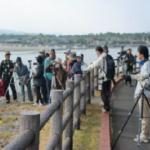 2019年2月の吹上浜海公園イベント情報