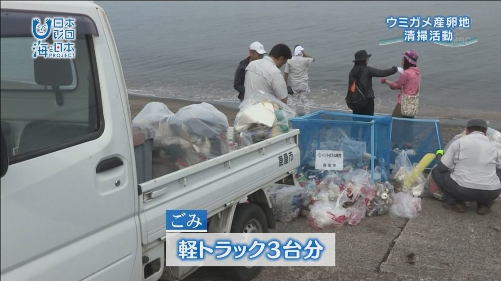ウミガメの産卵地、鹿屋市・浜田海岸で海岸清掃
