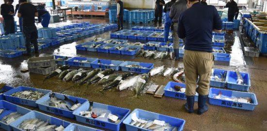 高山漁協の青い大きなコンテナMBCラジオ『たんぽぽ倶楽部』トトナビ