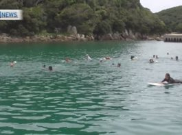 種子島「海の小学校」と「山の小学校」で遠泳で交流!